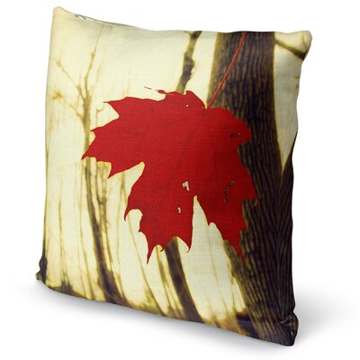 One Accent Pillow Size: 16 H x 16 W x 5 D
