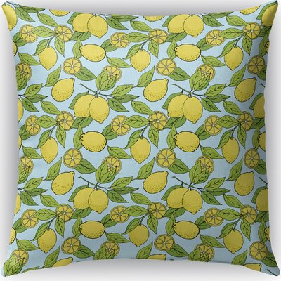 Cybil Indoor/Outdoor Throw Pillow Size: 16
