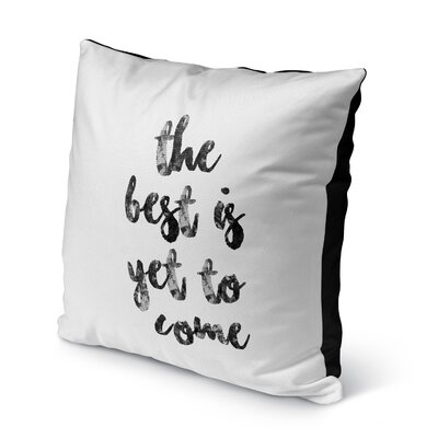 Chelsie Indoor/Outdoor Throw Pillow Size: 16 H x 16 W x 8 D