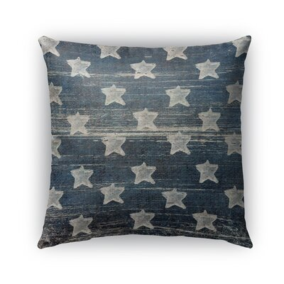 Tonya Square Indoor/Outdoor Throw Pillow Size: 18 x 18