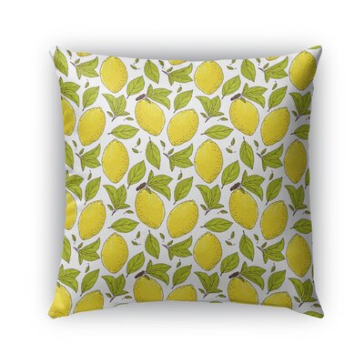 Cybil Lemons Indoor/Outdoor Throw Pillow Size: 16 x 16