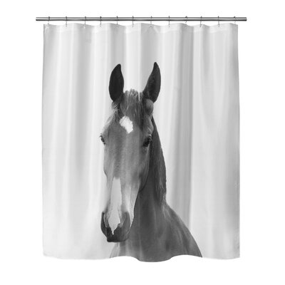 Giusti Horse Shower Curtain Size: 90 H x 72 W