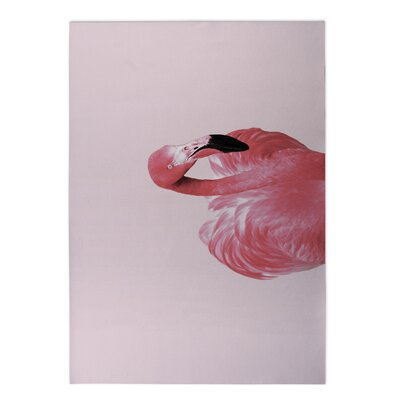 Kilani Flamingo Pink Indoor/Outdoor Area Rug Size: Round 8 x 8