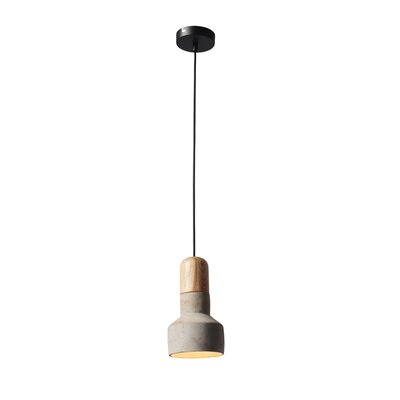Rochester 1-Light Mini Pendant Shade color: Gray