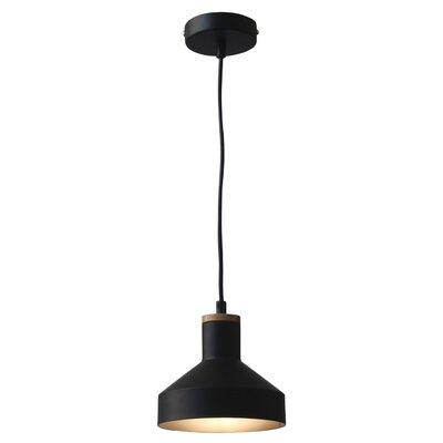 Vedder 1-Light Mini Pendant