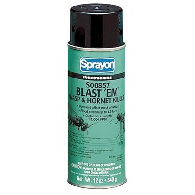 SPRAYON Blast'EM Wasp & Hornet Killer - big blast'em wasp & hornet killer - Size: 20 Ounce (Set of 12) at Sears.com