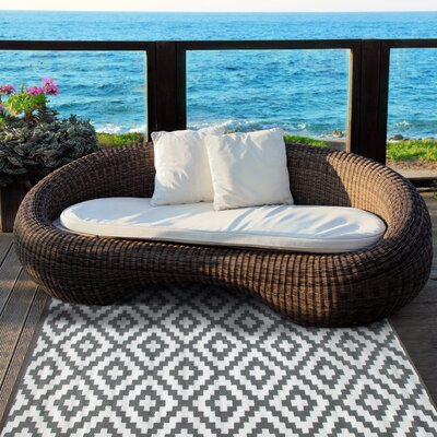 Nirvana Gray/White Indoor/Outdoor Area Rug Rug Size: 3 x 5