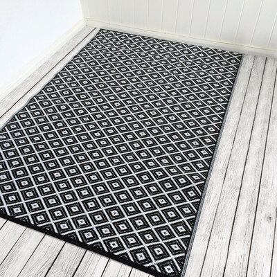 Arabian Nights Black/White Indoor/Outdoor Area Rug Rug Size: 4 x 6