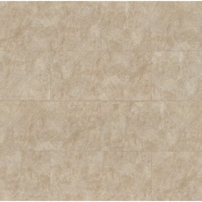 Indiana 12 x 24 Stone and Porcelain Tile in Beige