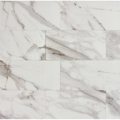 Calacatta dItalia 12 x 24 Porcelain Field Tile in Polished
