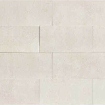 El Dorado 12 x 24 Porcelain Field Tile in Shell Polished