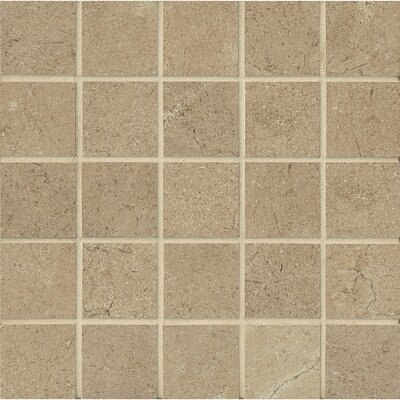 El Dorado 2 x 2 Porcelain Mosaic Tile in Starfish