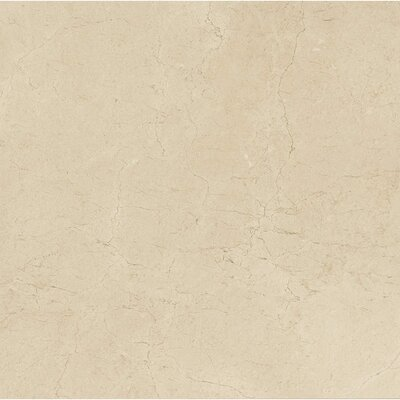 El Dorado 6 x 6 Porcelain Field Tile in Oyster