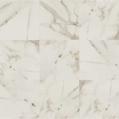 Calacatta dItalia 24 x 24 Porcelain Field Tile in Polished