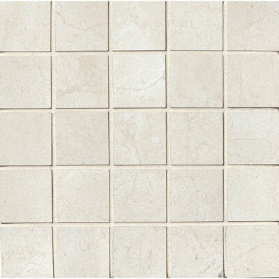 El Dorado 2 x 2 Porcelain Mosaic Tile in Shell