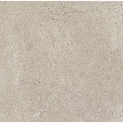 El Dorado 6 x 6 Porcelain Field Tile in Rock