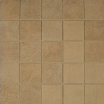 Studio 12 x 12 Porcelain Mosaic Tile in Terrace