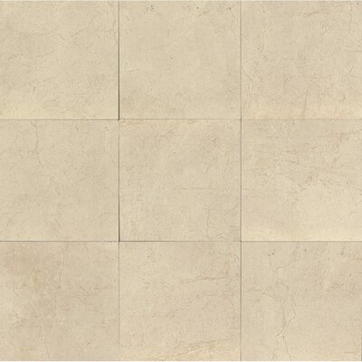 El Dorado 12 x 12 Porcelain Field Tile in Oyster