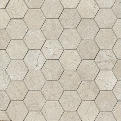 El Dorado 2 x 2 Porcelain Hexagon Mosaic Tile in Rock