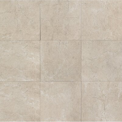 El Dorado 12 x 12 Porcelain Field Tile in Rock