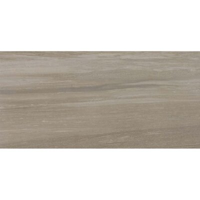 Laguna 12 x 24 Porcelain Field Tile in Balboa
