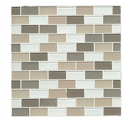 Shoreline 1 x 1.88 Glass Mosaic Tile in Morro