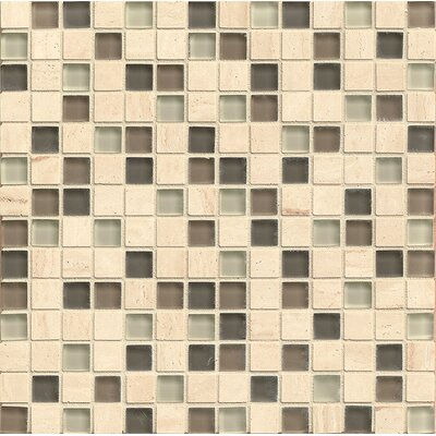 Concord  0.75 x 0.75 Stone and Glass MosaicTile in Friendship