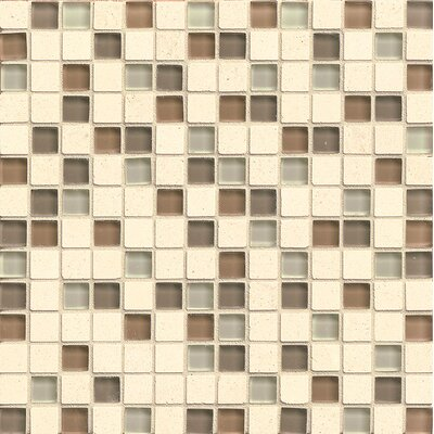 Concord 0.75 x 0.75 Stone and Glass Mosaic Tile in Amity