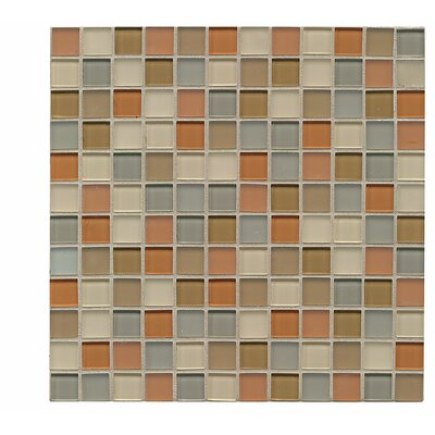 Harmony 1 x 1 Glass Mosaic Tile in Rapport