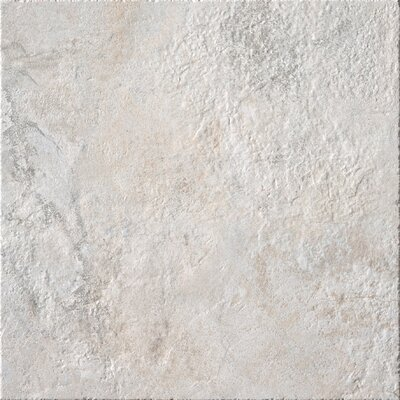 Rome 20 x 20 Porcelain Field Tile in Cream