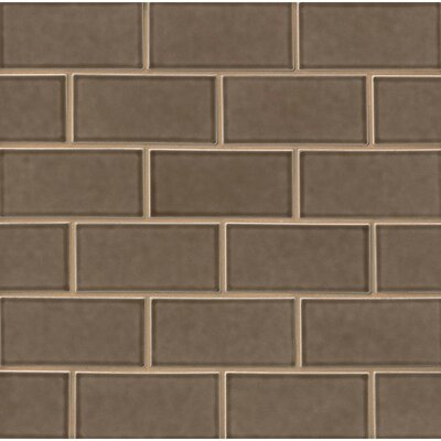 Park Place 3 x 6 Ceramic Subway Tile in Matte Brown