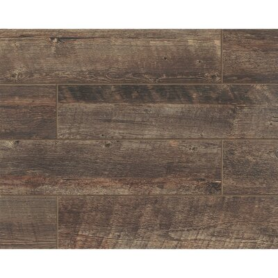 Barrel 6 x 24 Porcelain Wood Look/Field Tile in Vine