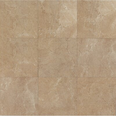 El Dorado 24 x 24 Porcelain Field Tile in Starfish Polished