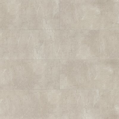 El Dorado 12 x 24 Porcelain Field Tile in Rock Polished