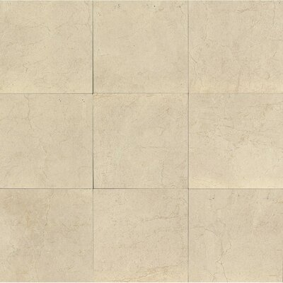 El Dorado 24 x 24 Porcelain Field Tile in Oyster Polished