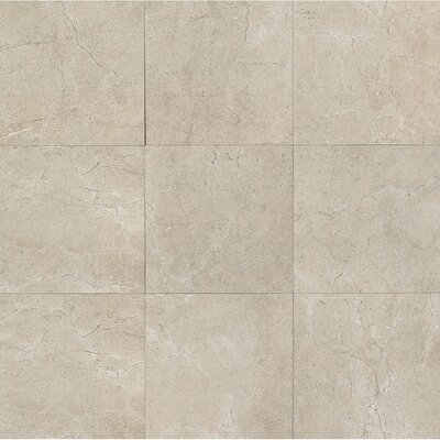 El Dorado 24 x 24 Porcelain Field Tile in Rock Polished