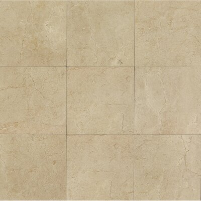 El Dorado 24 x 24 Porcelain Field Tile in Sand Polished