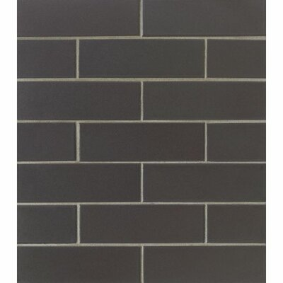 Reverie 2 x 6  Porcelain Subway Tile in Black