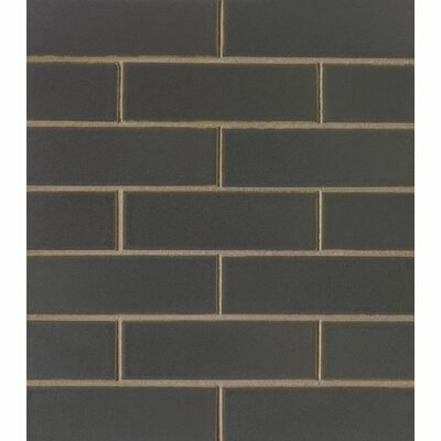 Reverie 2 x 6 Porcelain Subway Tile in Orbit