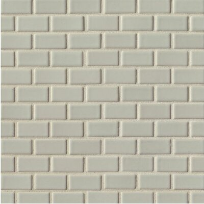 Portofino 1 x 2 Ceramic Mosaic Tile in Gray