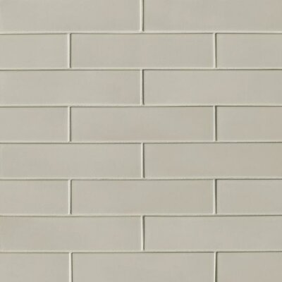 Portofino 3 x 12 Ceramic Subway Tile in Gray