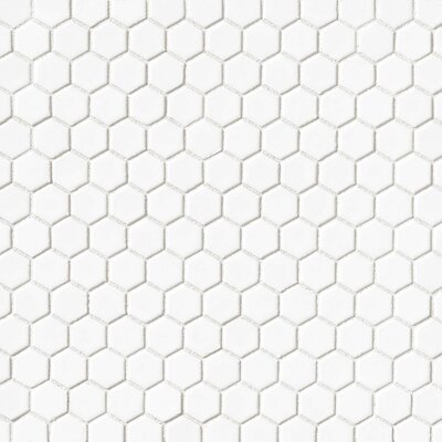 Hex 1 x 1 Porcelain Mosaic Tile in White