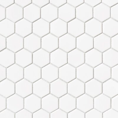 Hex 2 x 2 Porcelain Mosaic Tile in Glossy White