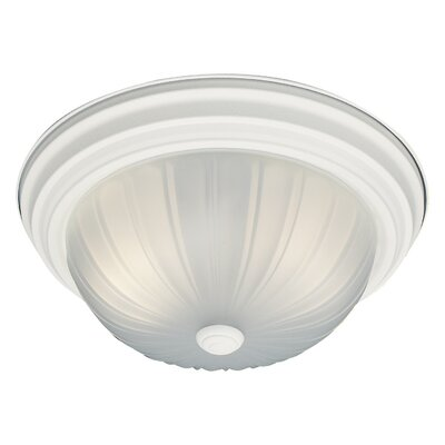 Ceiling Essentials 2-Light Flush Mount Finish: Textured White