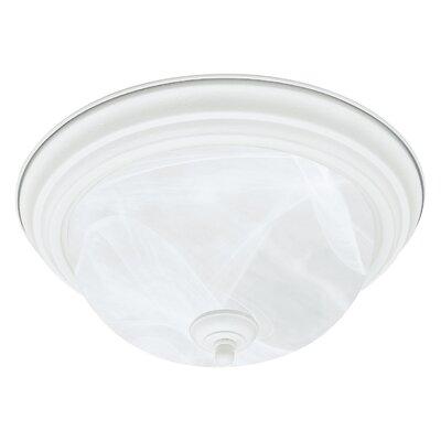 Ceiling Essentials 2-Light Flush Mount Finish: Textured White