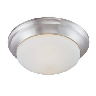 Ceiling Essentials 2-Light Flush Ceiling Mount