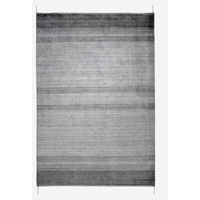 Isla Hand-Woven Gray Area Rug Rug Size: 53 x 76
