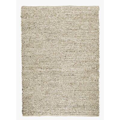 Sebastian Hand-Woven Gray Area Rug Rug Size: 53 x 76