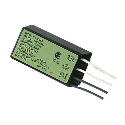80W Electronic Transformer (Set of 2)