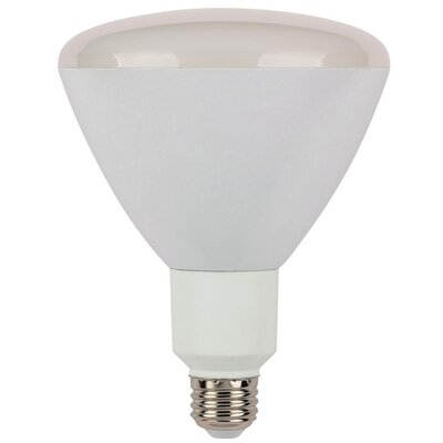 Reflector Dimmable LED Light Bulb Wattage: 13